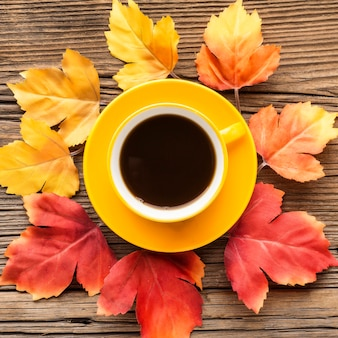 Cup of coffee with leaves