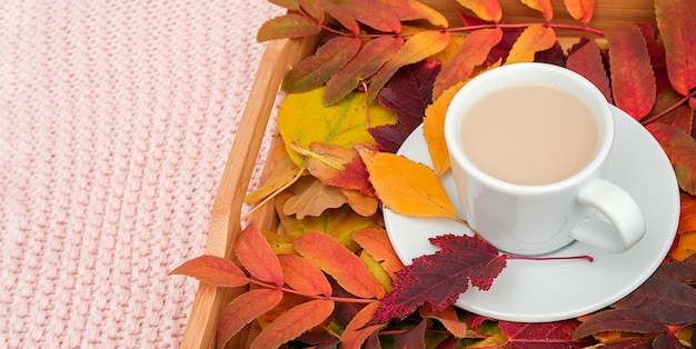 Cup of coffee with milk and colorful leaves on wood tray on pink pastel knitted plaid background.