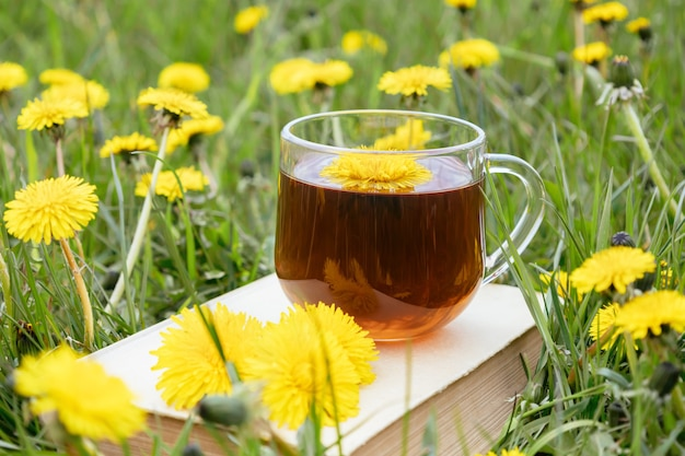 Cup of dandelion tea with book and flowers on meadow herbal medicine vitamin drink