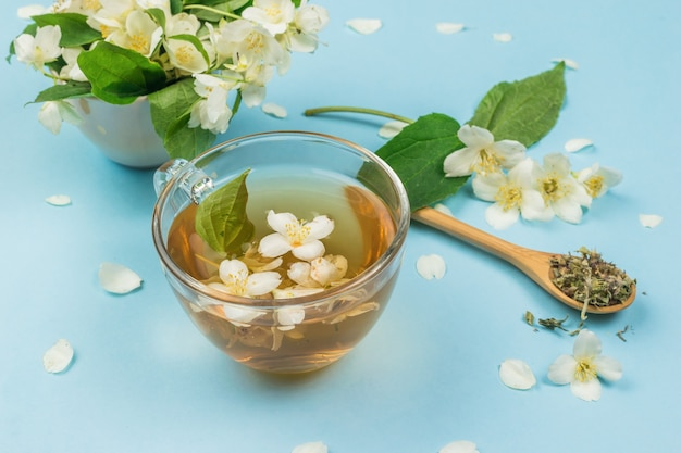 A cup of floral tea and branches with blooming jasmine on a blue background.