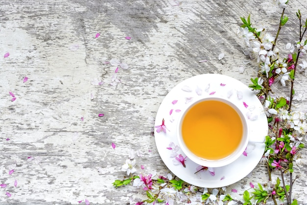 Cup of green tea on saucer and branches of blossoming sakura and cherry