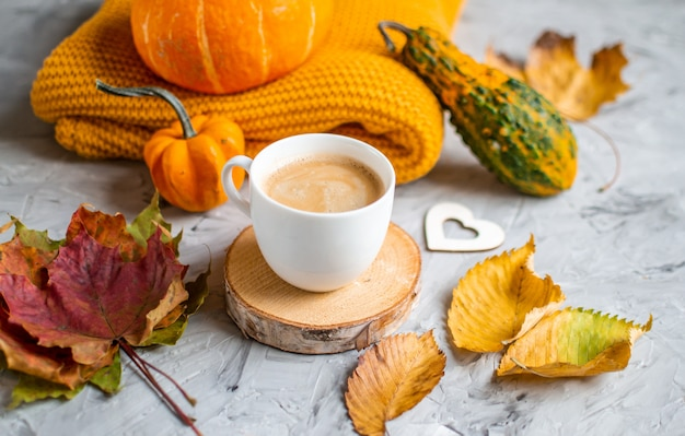 Cup hot chocolate coffee autumn time bakery pretzel knitting scarf leaves