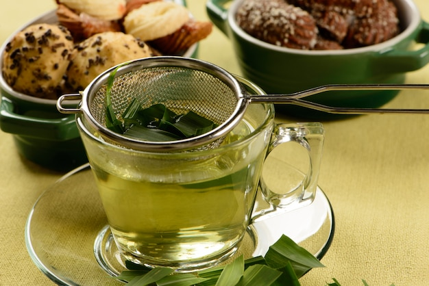 Cup of lemon balm herb with crackers