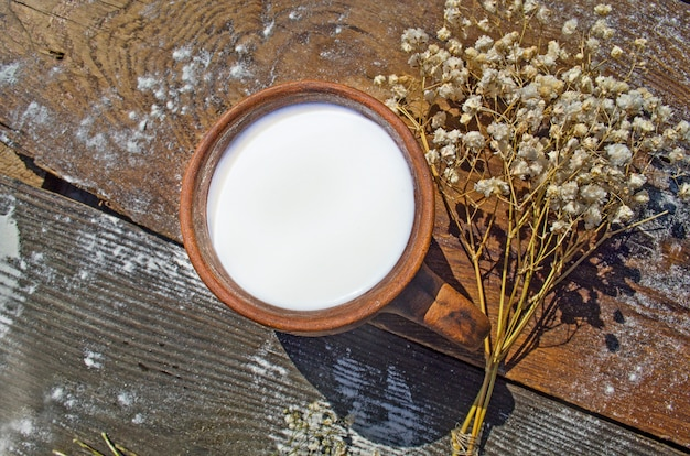 Cup of milk on nature background.