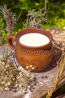 Cup of milk on nature background