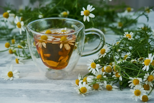 Cup of natural herbal tea, with chamomile flowers on gray