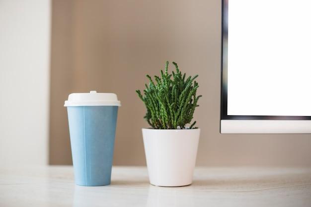 Cup near plant in pot near tv