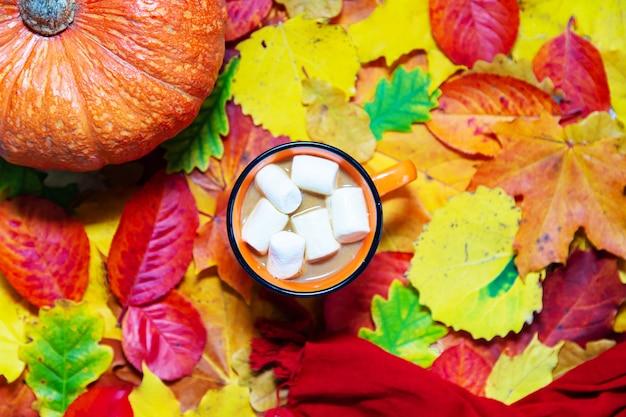 色とりどりの紅葉にココア、カボチャ、スカーフのカップ。フラットレイ。