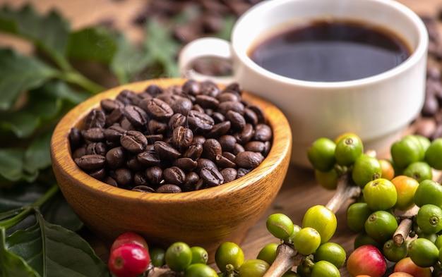 Чашка кофе в зернах с дымом