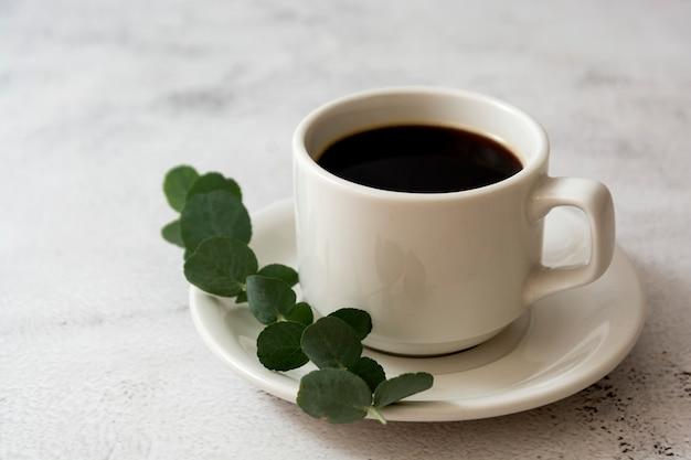 커피 한잔, 유칼립투스 지점. 평면도