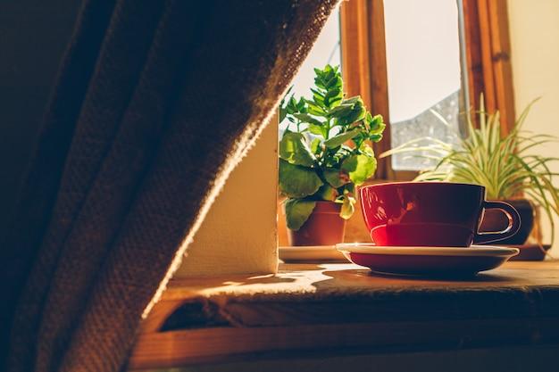 Чашка горячего кофе с низким солнечным светом из окон.