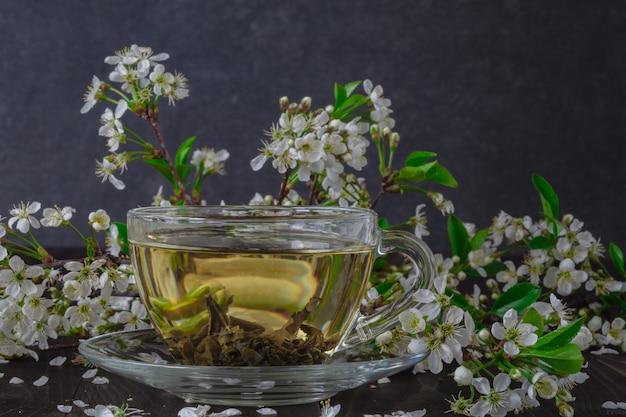 Чашка чая и ветка сакуры