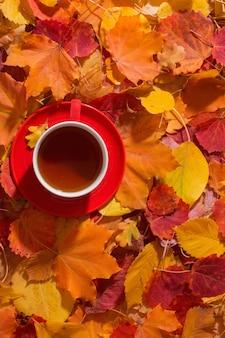 Чашка чая на фоне осенних листьев
