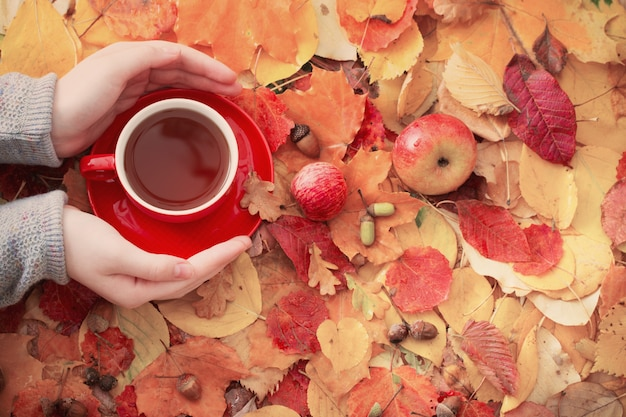 Cup of tea in hand on surface autumn leaves