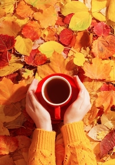 Cup of tea in hand on wall autumn leaves