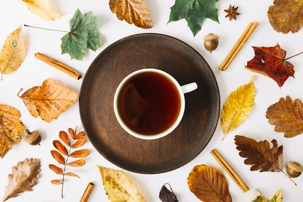 Cup of tea on plate among leaves