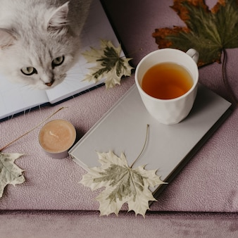 Cup of tea with a book in the interior with autumn leaf
