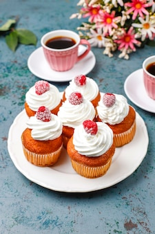 Cupcakes decorated whipped cream and frozen raspberries.
