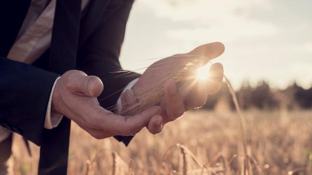 明るい朝のサンバーストで麦畑に立っているスーツを着たビジネスマンのカップ状の手。