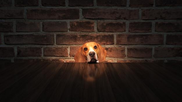 Любопытная собака выглядывает за столом снизу 3d рендеринг