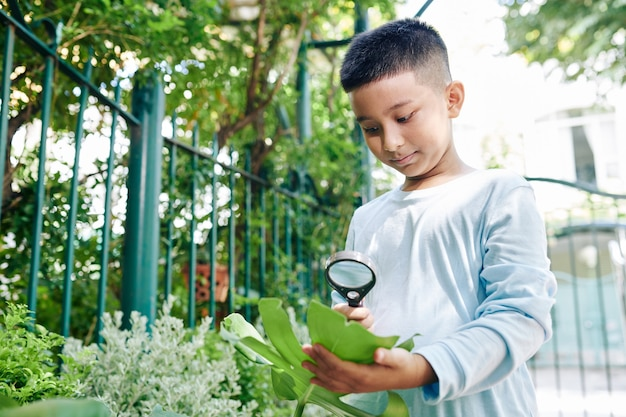 Curious vietnamese boy looking at leaf through magnifying glass in park