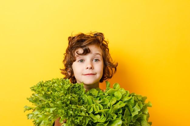 곱슬 소년 보유 녹색 잎