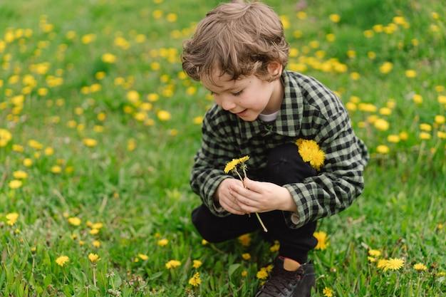 민들레 꽃과 곱슬 소년