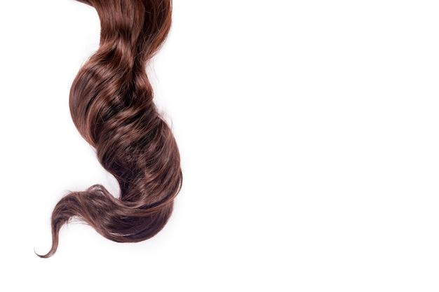 곱슬 갈색 머리는 흰색 배경에 고립입니다. 아름다운 건강한 긴 초콜릿 갈색 머리 자물쇠, 이발, 헤어 스타일. 염색 머리 또는 착색, 머리 확장, 치료, 치료 개념.