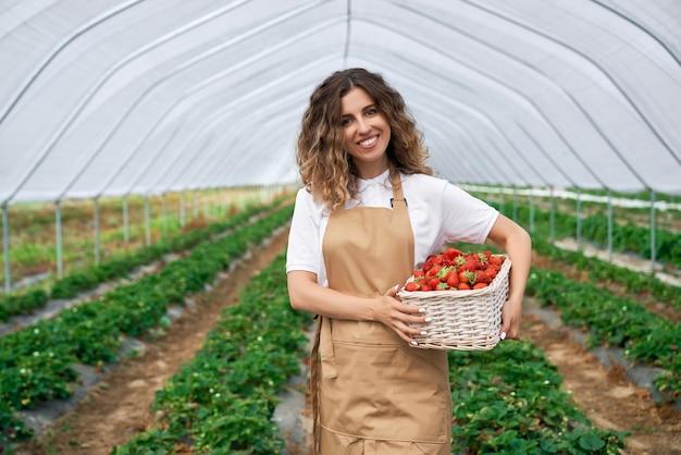 温室でイチゴを収穫する巻き毛のブルネット