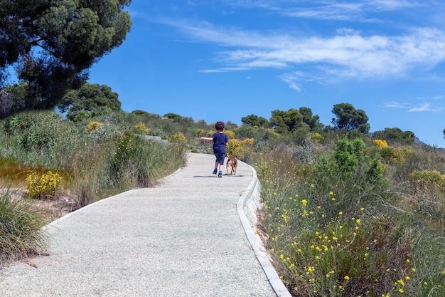 곱슬머리 소년과 그의 작은 개는 숲의 오솔길을 오르막을 걷는 뒤에서 본