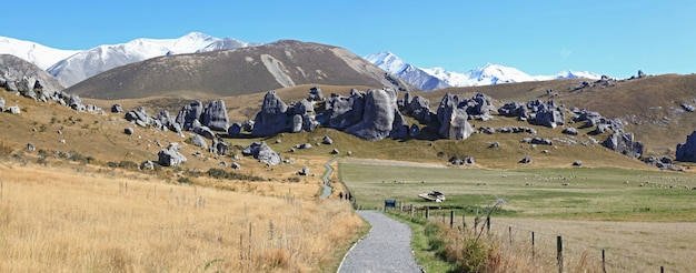 Curve pathway at castle hill alps mountain range new zealand