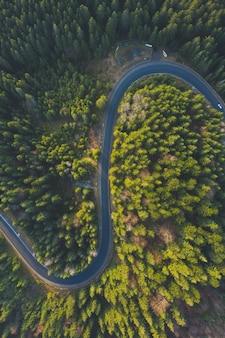 드론에서 굽은 공중 도로. 소나무와 가문비 나무 근처 산에서 숲 아스팔트 도로
