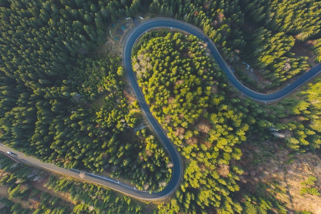 Curved aerial road from a drone. forest asphalt road in the mountains near pine and spruce