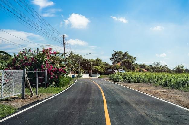 サトウキビ農園と田舎道の青い空を通る湾曲したアスファルト道路