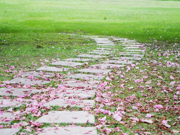 Curved brick path with pink falling trumpet flowers