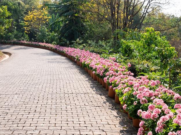 Curved brick pathway.