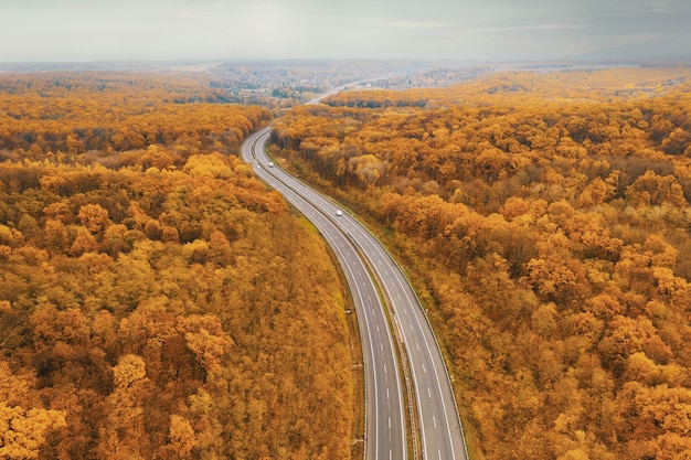Curved freeway facing the horizon amid the yellow autumn forest - an atmospheric perspective from the height of the drone's flight