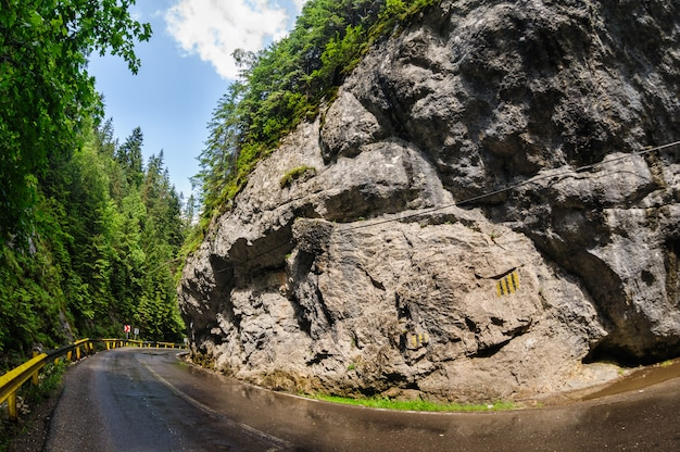 Curved road in bicaz canyon, romania