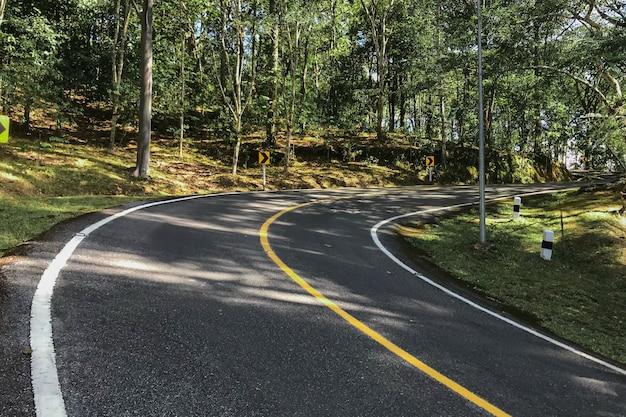 곡선 도로 나무와 길가에 잔디입니다.