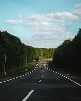 Curved road with green spring trees on sides
