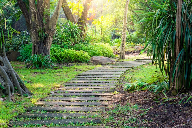 Curvy pathway in a park