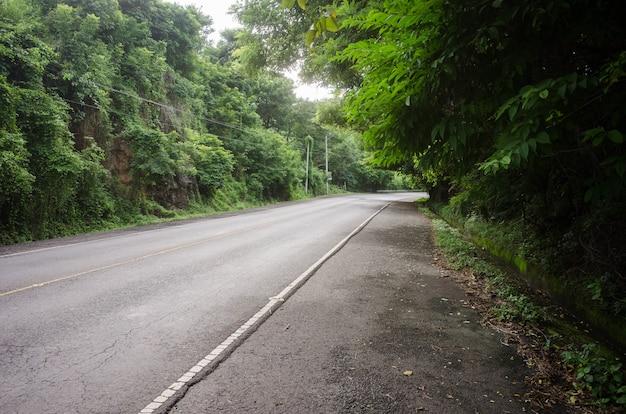 曲がりくねった道は田舎の森の緑に囲まれています