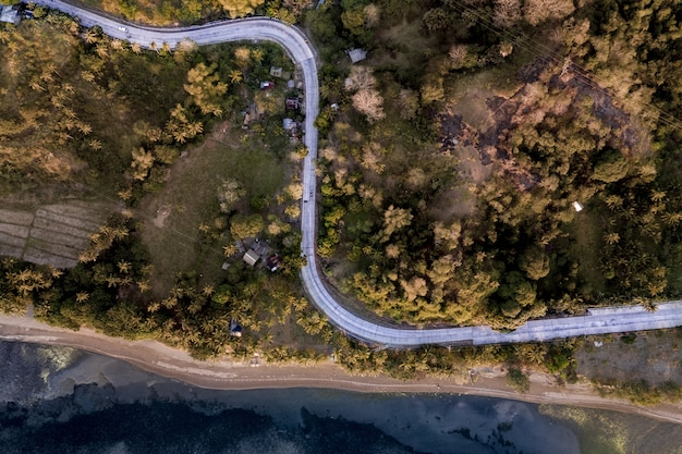 Curvy road in the middle of grassy fields covered in trees near the sea