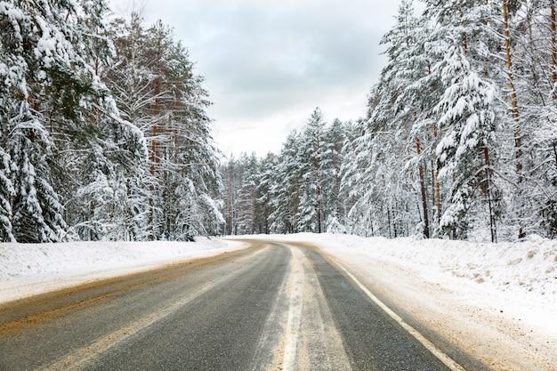 Пышная заснеженная проселочная дорога, ведущая через лес