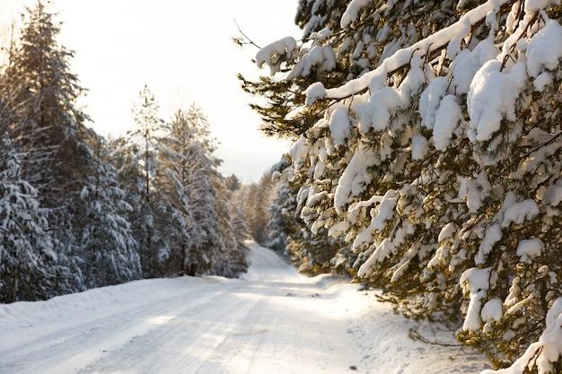 Пышная заснеженная деревенская дорога по дереву