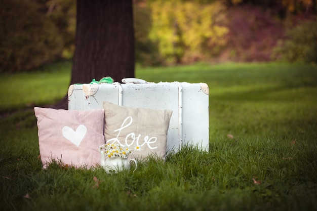 Cushions and white suitcase in nature