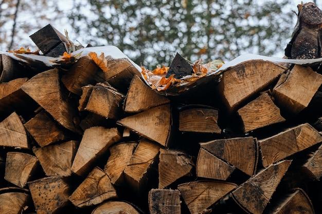 木の幹を切って積み上げる