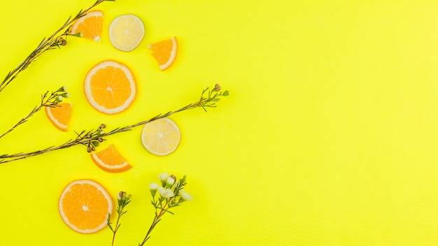 Cut citrus fruits and flowers on bright background