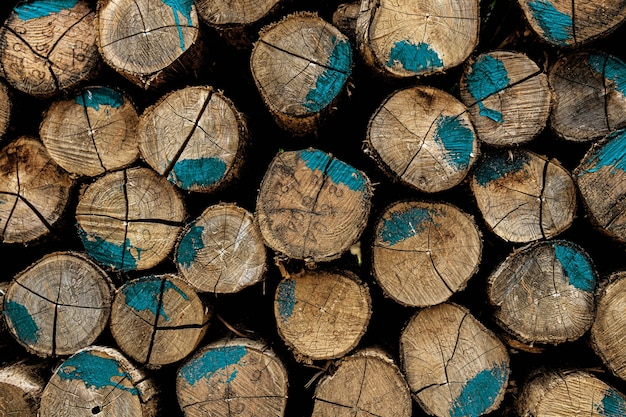 Cut logs background.