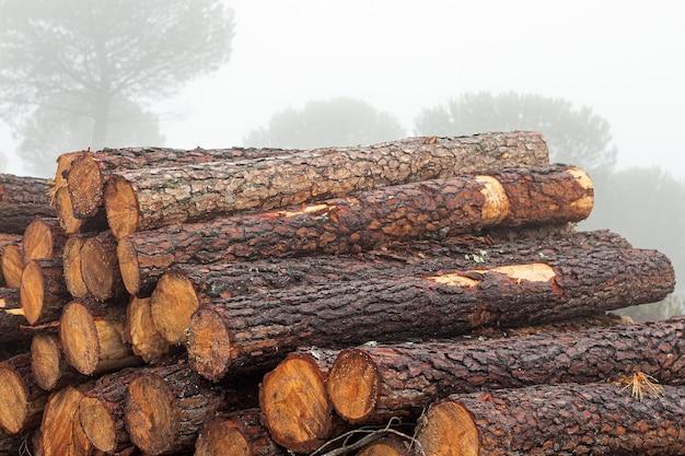 霧と雨の日に森に積み上げられた薪の丸太を切る